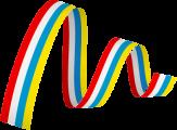 Logo Mainzer Fastnacht eG